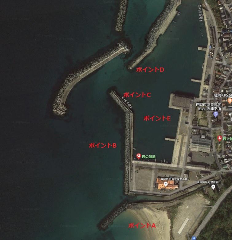 西の浦漁港釣り場